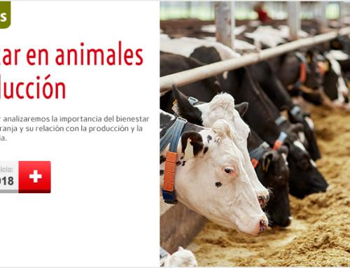 WEBSEMINAR: BIENESTAR EN ANIMALES DE PRODUCCIÓN. 26 DE FEBRERO DE 2018