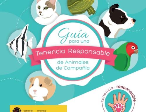 Guía para una tenencia responsable de mascotas