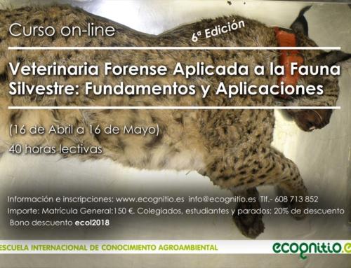 """Curso online sobre """"Veterinaria Forense Aplicada a la Fauna Silvestre: Fundamentos y Aplicaciones"""""""