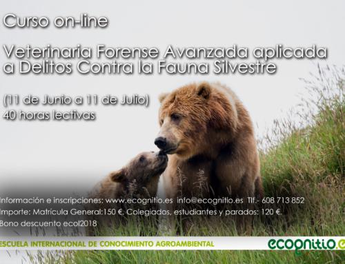 Curso on-line sobre Veterinaria Forense Avanzada. Delitos contra la fauna silvestre