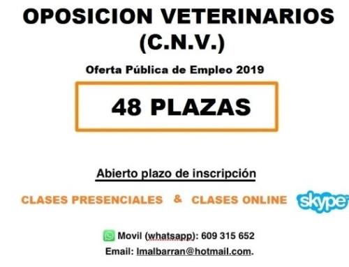Preparador Oposiciones Cuerpo Nacional y CCAA Aragón