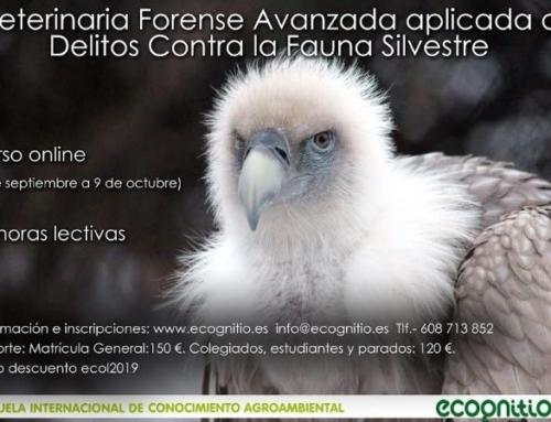 Curso online sobre Veterinaria Forense Avanzada