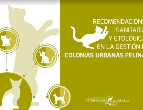Protocolo de Gestión de Colonias Urbanas Felinas