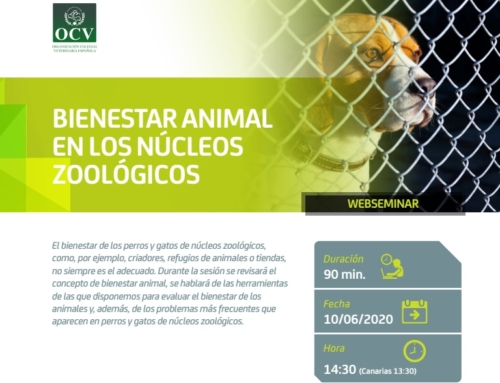 """WEBSEMINAR """"BIENESTAR ANIMAL EN LOS NÚCLEOS ZOOLÓGICOS""""."""