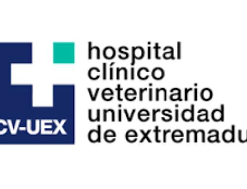 Internados en el HCV de la Universidad de Extremadura