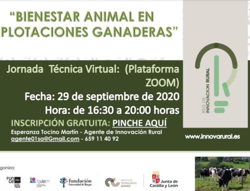 Jornada Virtual Gratuita: BIENESTAR ANIMAL EN EXPLOTACIONES GANADERAS