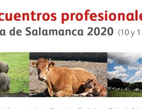 Encuentro Profesional Feria de Salamanca 2020.