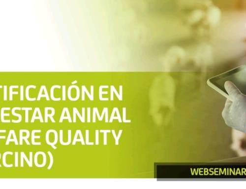 """SEMINARIO WEB: """"CERTIFICACIÓN EN BIENESTAR ANIMAL WELFARE QUALITY (PORCINO)""""."""
